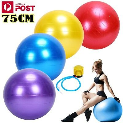 Swiss Ball Yoga Home Gym Exercise Pilates Equipment Fitness Ball 75Cm Safety  Au