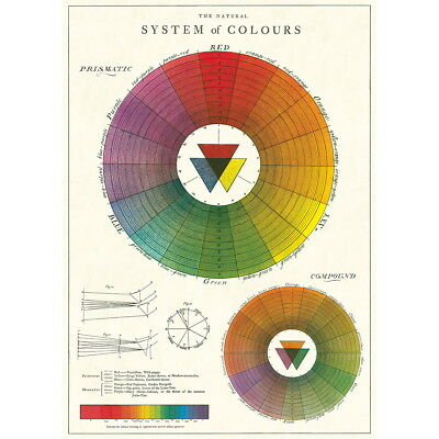 Color Wheel Chart Artist Vintage Style Classroom Poster Ephemera