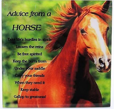 Horse Plaque - Advice from a Horse Glass Desk Plaque