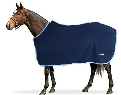 CHONMA 1680D 250G Fill Winter Waterproof BreathableTurnout Horse Rug Combo-A33A