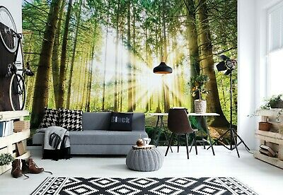312x219cm Wall mural photo wallpaper Roaring abstract Lion bedroom adhesive