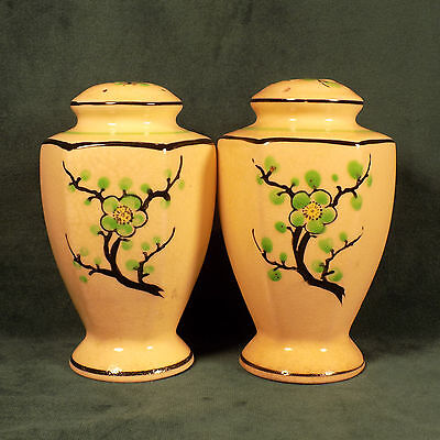 Antique Porcelain Salt and Pepper shakers Lime Green blossom flowers hand paint