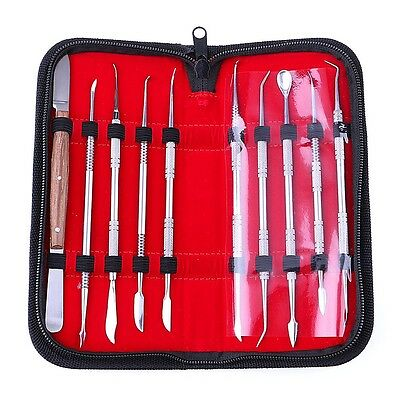 Pro Set Dental Dentist Scaler Tweezers Instruments pick tool Kit 10 Pieces Case
