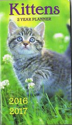 Kittens  2016-2017 - 2 Year Pocket Calendar Agenda Planner Appointment Book Cat