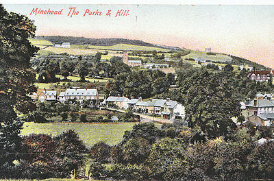 Somerset Postcard - Minehead - The Parks and Hill - Showing Houses  N608