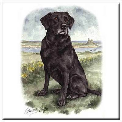 "Labrador Retriever 4"" Tile"