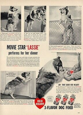 1948 Red Heart PRINT AD Rare Dog Food features Lassie the movie star Collie