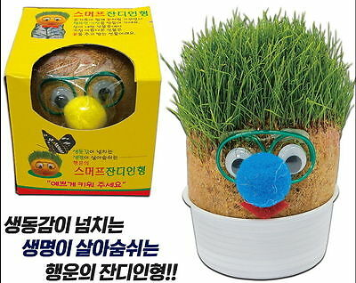 Smurf Grass Doll Real Grass Seeds Just Spray Water Ideal for Gift & Decoration