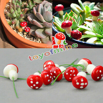 20Pcs Red Mini Mushrooms Toadstools Magic multicolor Fairy Moss Garden Terrarium