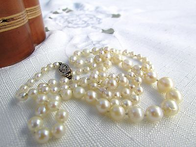 """22"""" Graduated Quality Cultured Pearl Necklace Has 14K Clasp With Genuine Diamond"""