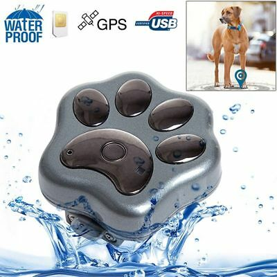 Traceur GPS chien chat waterproof collier localisation micro espion GSM tracker