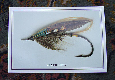Vintage Salmon Fly Postcard Fishing Angling
