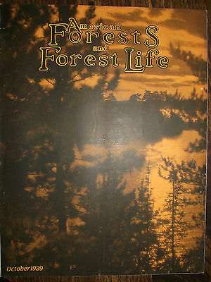 1929 Oct~ American Forest Magazine ~ American Foresty Association ~ Very Nice