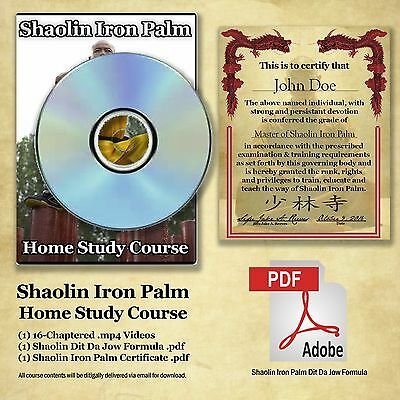 Shaolin Iron Palm Home Study Certification Course