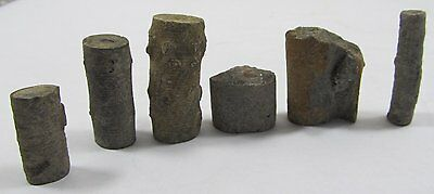Group Lot Crinoids Fossil Specimens - Jewelry Craft Material