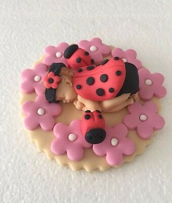 3D Edible Lady Bug Baby Shower Christening Cake Topper  First Birthday Cake