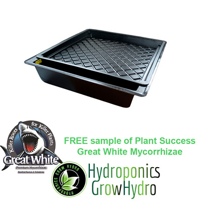 GT100 Complete NFT Hydro Tray Kit - free Great White sample 15g