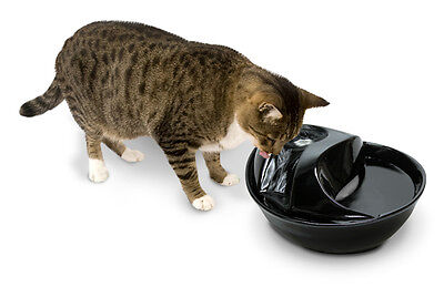 Pioneer Pet Raindrop Water Fountain Plastic