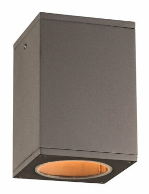 PLC Lighting Dominick 1-Light Outdoor Flush Mount