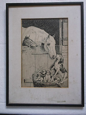 Framed Ink Study Of A Scene Of Horses And A Dog With A Litter Of Puppies