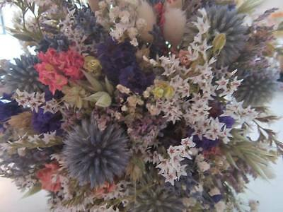 Dried Flower Wedding Bouquet by Florence and Flowers Scottish Thistles