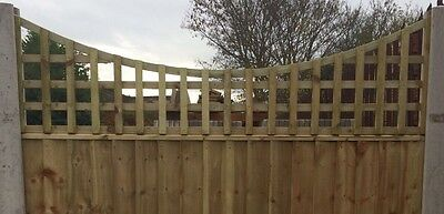 6x2 Concave Dome Top Privacy Trellis Fence Topper Lattice TREATED Wood RRP £35