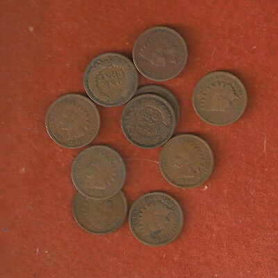 10 Assorted United States Indian Head Cents Nice Coins