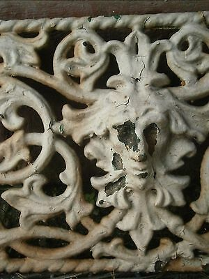 Architectural Gothic Medieval Face Iron Window Guard