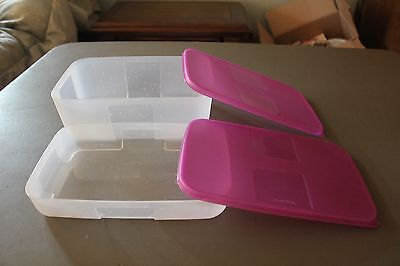 Tupperware Freezer Mates 6 Cup & 21/2 Cups Sheer with Purplicious Seals/Lids