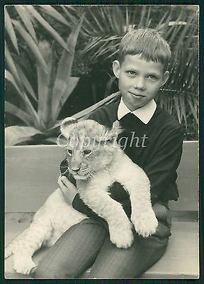 NEAT LITTLE BOY HOLDING LION CUB Berlin ZOO Vintage Photo 60s TOP