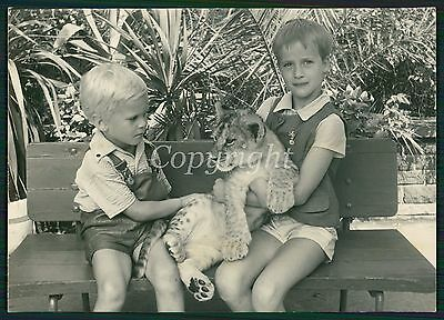 CUTE BOYS LEATHER SHORTS HOLDING LION CUB Berlin ZOO Vintage Photo 60s