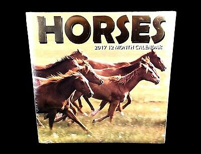"NEW sealed 2017 ""HORSES"" 12-month WALL CALENDAR monthly Arabian, Quarter, Morgan"