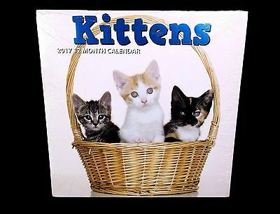 """NEW sealed 2017 """"KITTENS"""" 12-month WALL CALENDAR monthly, cat lover, pets, NWT"""