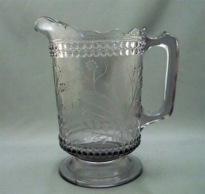 EAPG NOVA SCOTIA STARFLOWER Water Pitcher c1890 DEWDROP and FLOWERS Canadian