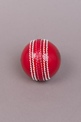 Cricket Dynamics InvinciBALL®