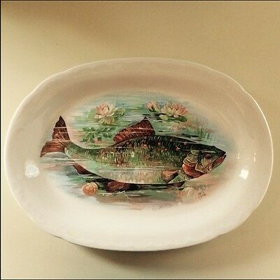 Antique/Vintage/Old Colorful Fish Oval Platter or Plate Unusual Marking