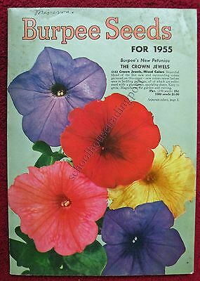 Illustrated Seed Catalog Burpee Seeds Pennsylvania 1955