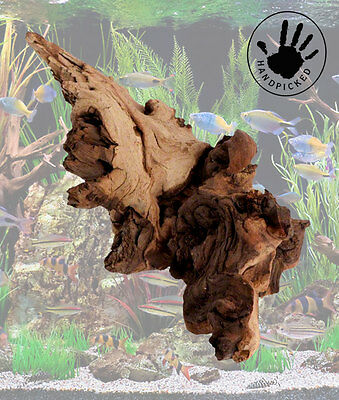 Tropical fish tank bogwood for tropical fish driftwood fish tank ornament.