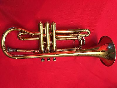 "Frank Holton Chicago ""New Proportion""  Cornet With Mutes Serial Number 8742!!"