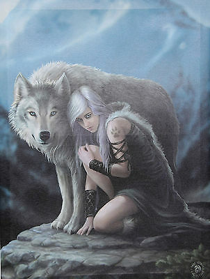 Fantasy Canvas (40x30)- The Protector by Anne Stokes-Framed-OZ Seller