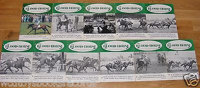 Vintage 1969 Blood Horse Thoroughbred Racing Magazine Lot Ky Derby Pappa Steve +