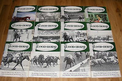 1976 Blood Horse Thoroughbred Racing Magazine Lot Kentucky Derby Forego + Equine