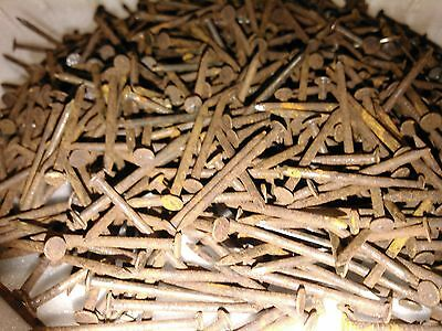 """2lbs  of  1 1/4"""" Old Round Head Nails Rusty Steampunk repurpose"""