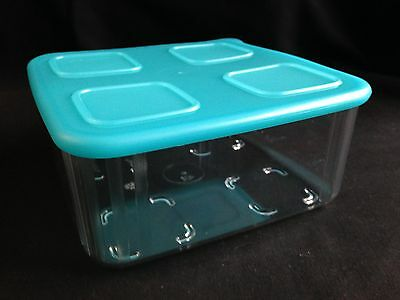 Tupperware Clear Mates Square #2 Blue X 1 Brand New