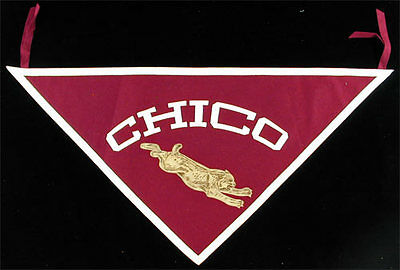 Chico State Wildcats _SUPER RARE_ vtg Trag 1920's Flag NCAA felt/leather pennant