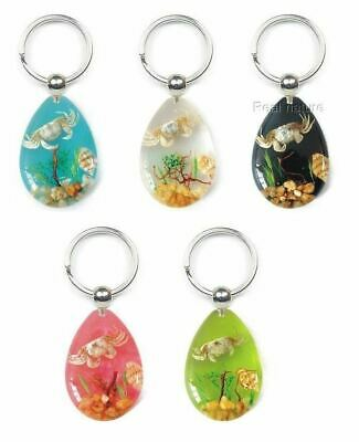 Real Sealife Scene Key Ring/Chain Charm - Crab Starfish Seashell