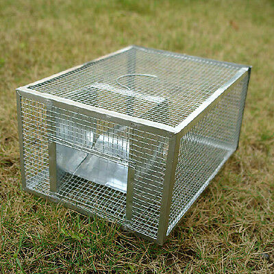 BG846 Metal Live Mouse Trap Cage Animal Mice Rat Control Catch