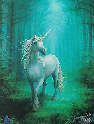 NEW Fantasy Picture Forest Unicorn Wall Plaque by Anne Stokes 25 cm x 19 cm