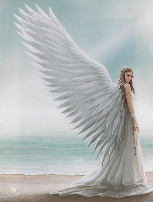 NEW Angel Picture Spirit Guide Wall Plaque by Anne Stokes 25 cm x 19 cm