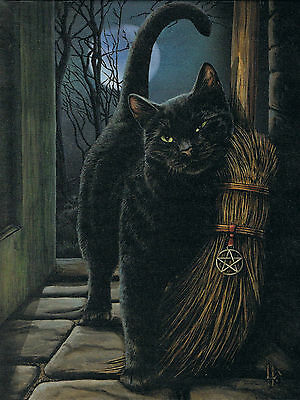 NEW Cat Wall Plaque Brush With Magick Picture Lisa Parker 25 cm x 19 cm Gothic